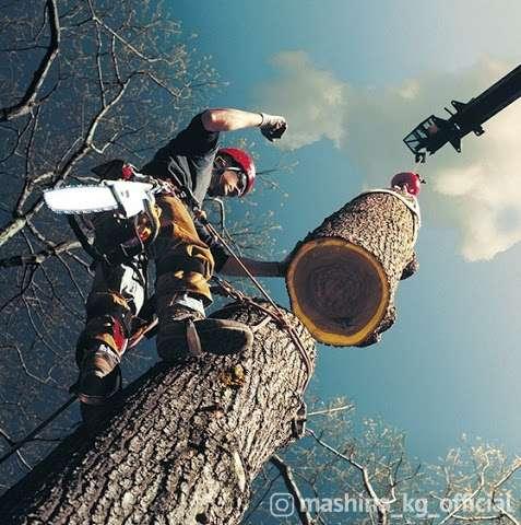 Другие - Пилю деревья бак кыям Дарак кыябыз