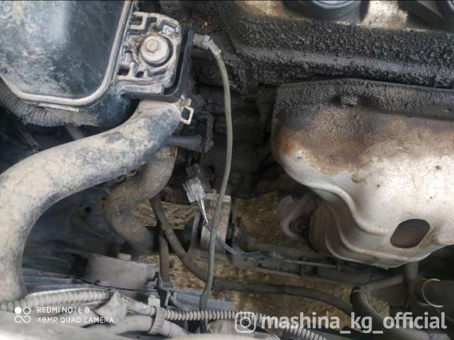 Автомойки - Мойка двигателя