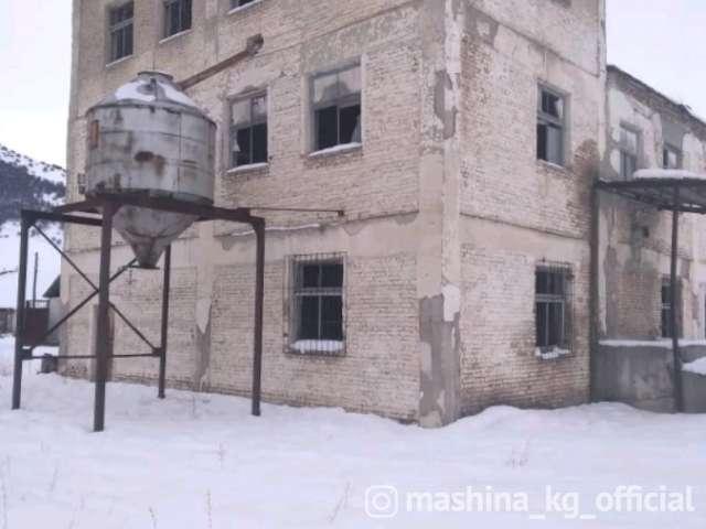 Другие - Продаю или меняю ПЕТКУС ГИГАНТ 531